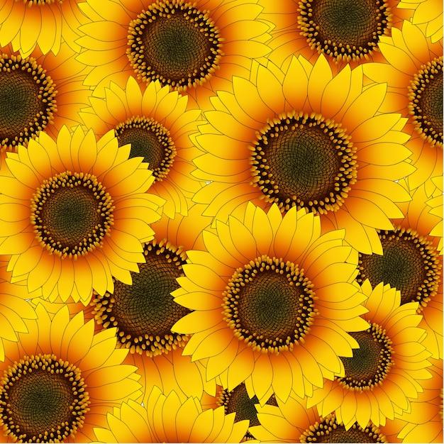 Orange yellow sunflower seamless background Premium Vector