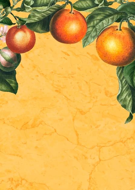 Oranges card Free Vector