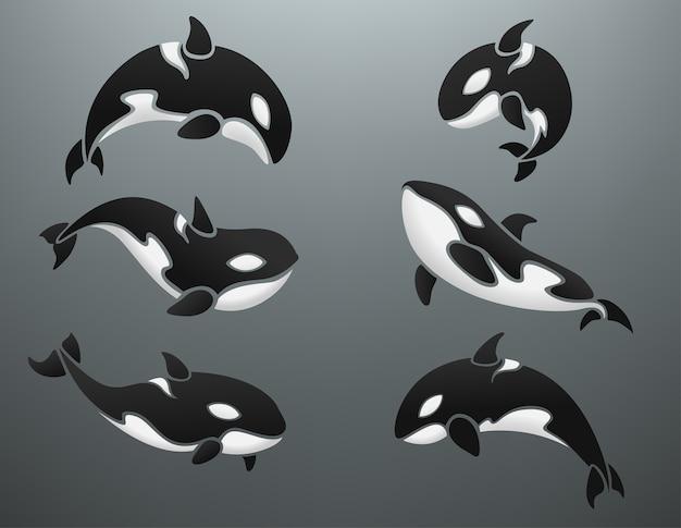 Orca logotype set Premium Vector