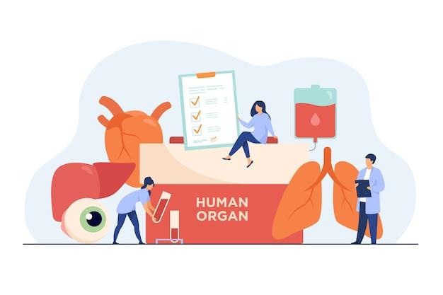 臓器提供のコンセプト。人間の臓器のテキスト、人間の肺、眼球、肝臓、心臓、血液が入った容器。 無料ベクター