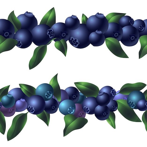 Organic blueberry template, cartoon style | Premium Vector
