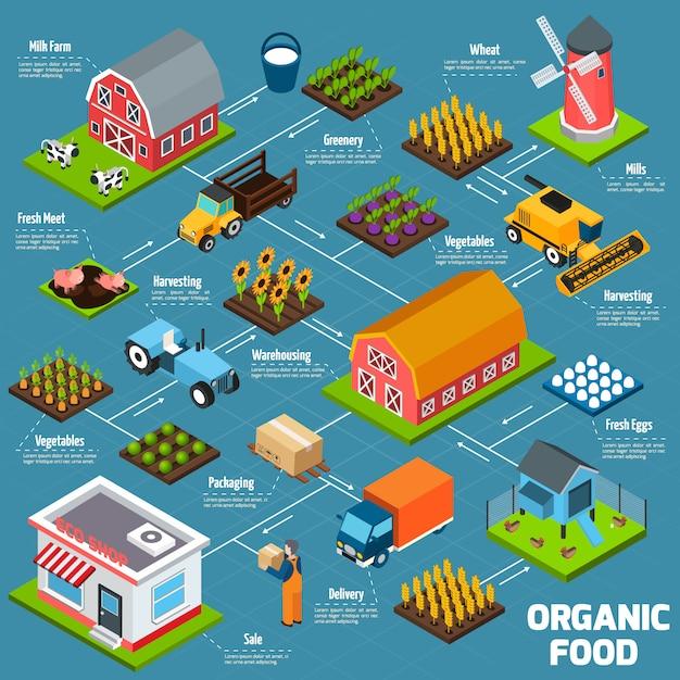 Organic food isometric flowchart Free Vector