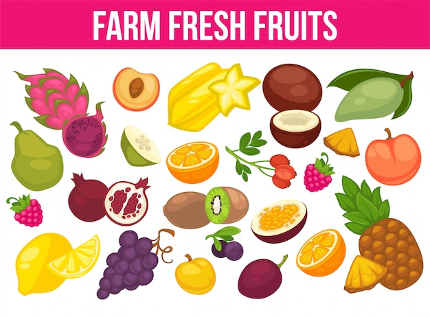 Organic fruits and berries harvest poster of fresh apple and mango or pineapple, natural pear, grape and tropical banana. Premium Vector