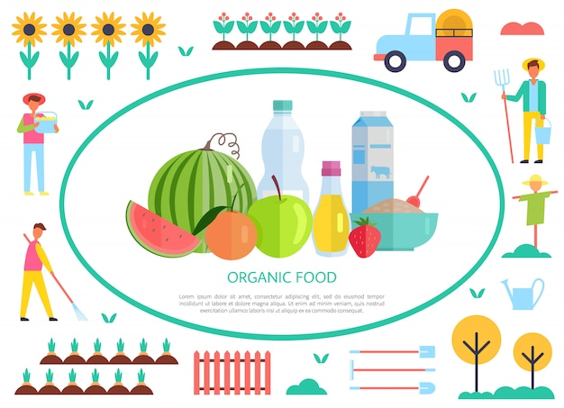 Organic and natural food production, vector banner Premium Vector