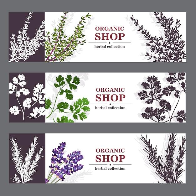 Органические баннеры магазина с травами Бесплатные векторы