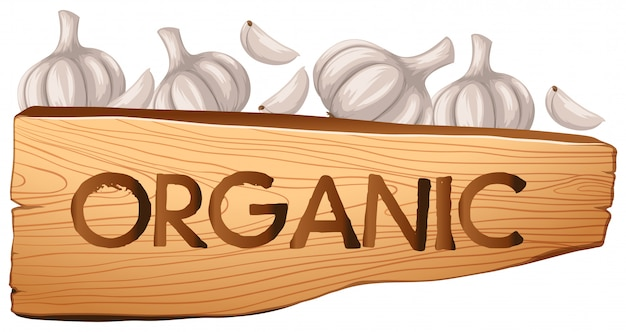 Organic sign and garlic Free Vector