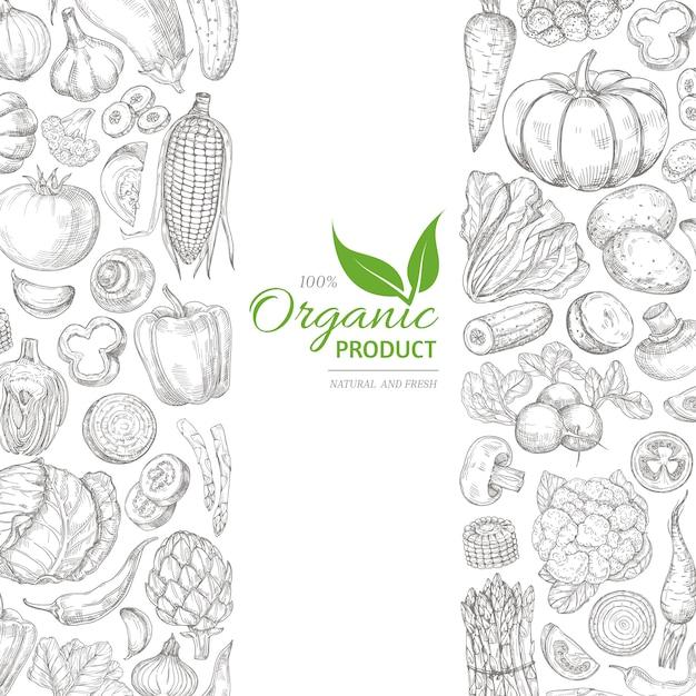 有機スケッチ新鮮な野菜ベクトルレトロな手描き落書き緑 Premiumベクター