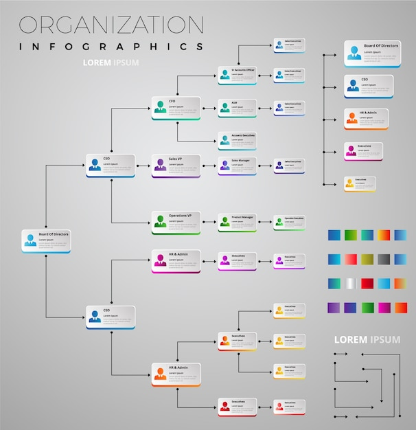 Organization Infographic Collection Vector