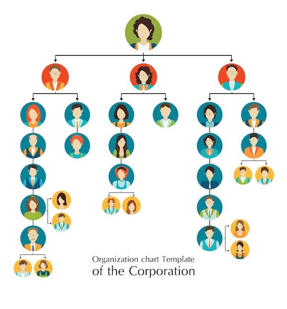 組織図法人のビジネス階層 Premiumベクター
