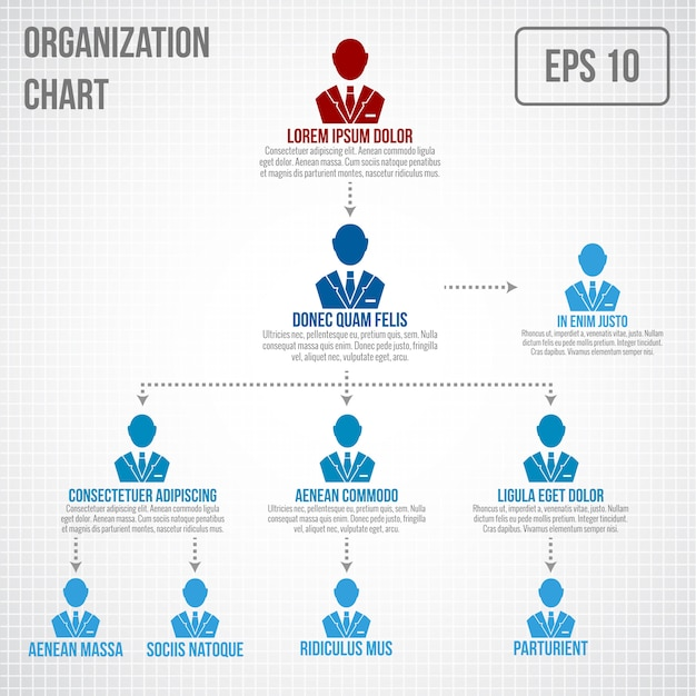 Organizational chart infographic template Free Vector