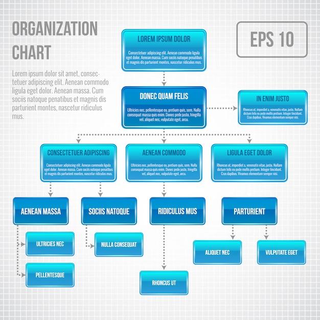 Organizational chart infographic template Premium Vector