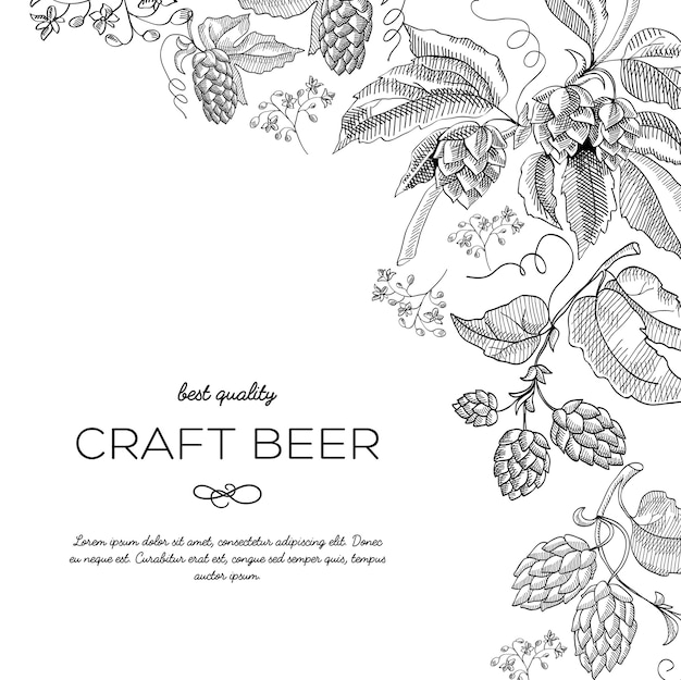 Doodle di ornamento cornice angolo originale con bacche di luppolo e steli di lusso vicino all'iscrizione che la birra artigianale ha illustrazione vettoriale doodle disegnato a mano di migliore qualità Vettore gratuito
