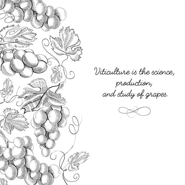 Оригинальный декоративный дизайн оригинальной открытки каракули рисованной с надписью о виноградарстве - это наука Бесплатные векторы