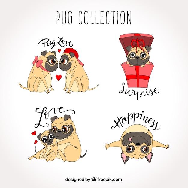 Original pack of lovely pugs Free Vector