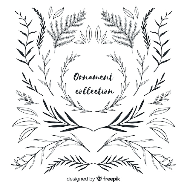 Ornament collection of leaves hand drawn style Free Vector