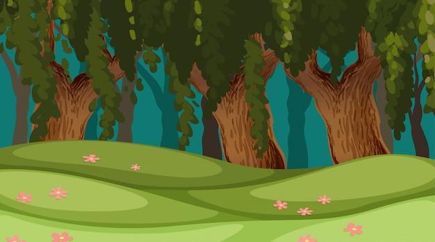 Outdoor wood background scene Free Vector