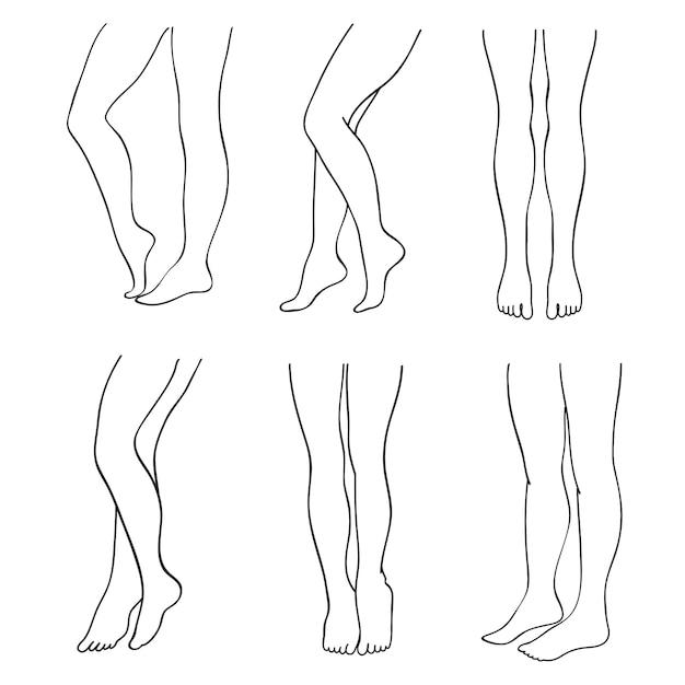 Outline attractive female legs  set Premium Vector