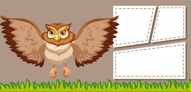 Owl on blank note frames Free Vector