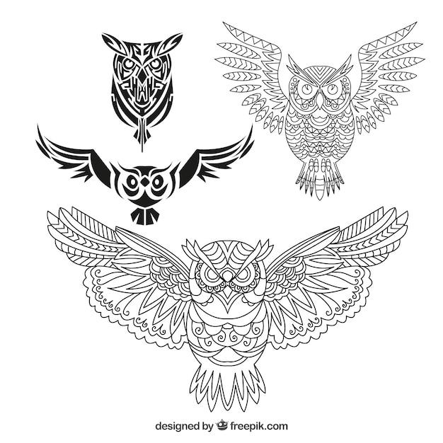 4つのフクロウのコレクション Premiumベクター