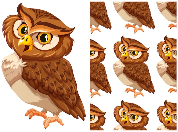 Owl isolated on white Free Vector