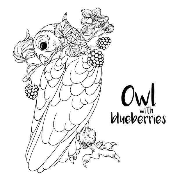 Owl with blueberries Premium Vector
