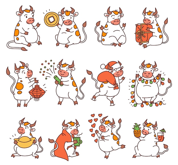 Ox set with chinese new year symbols. cute different bulls holds money and chinese lanterns and lets off fireworks. vector outline cartoon illustrations. Premium Vector