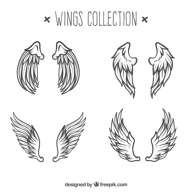 Pack of angels wings sketches Free Vector