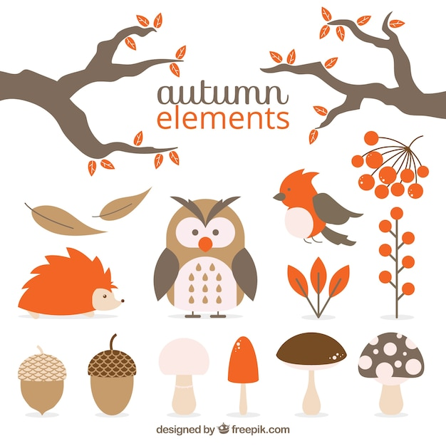 Pack of animals and autumnal natural elements Free Vector