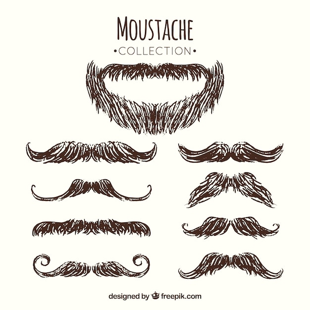 Pack of beard and mustache sketches Free Vector