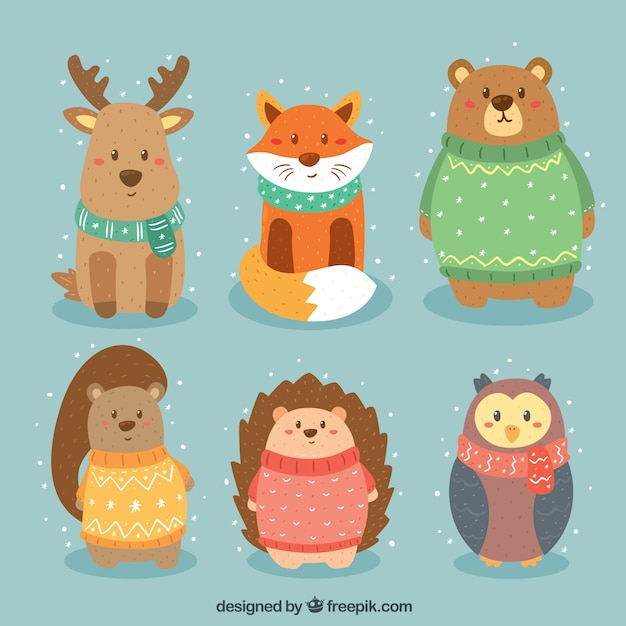 Pack of beautiful forest animals Free Vector