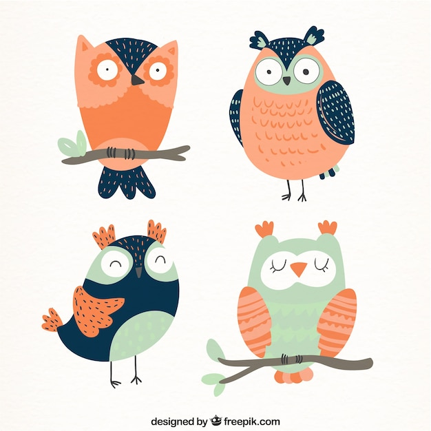 Pack of beautiful vintage owls Free Vector