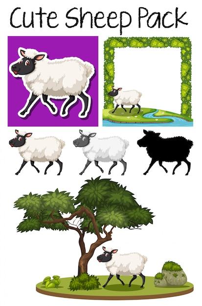 Pack of cute sheep Premium Vector