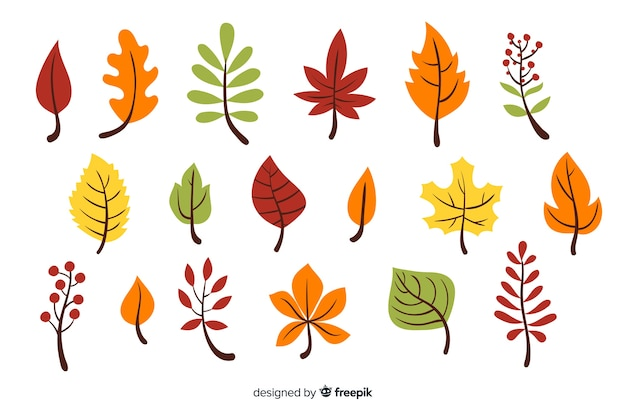 Pack of hand drawn autumn leaves Free Vector