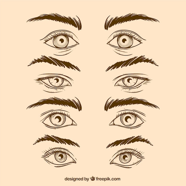 Pack Of Hand Drawn Eyes And Eyebrows In Realistic Style Vector