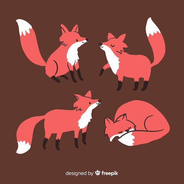Confezione di volpi disegnate a mano Vettore gratuito