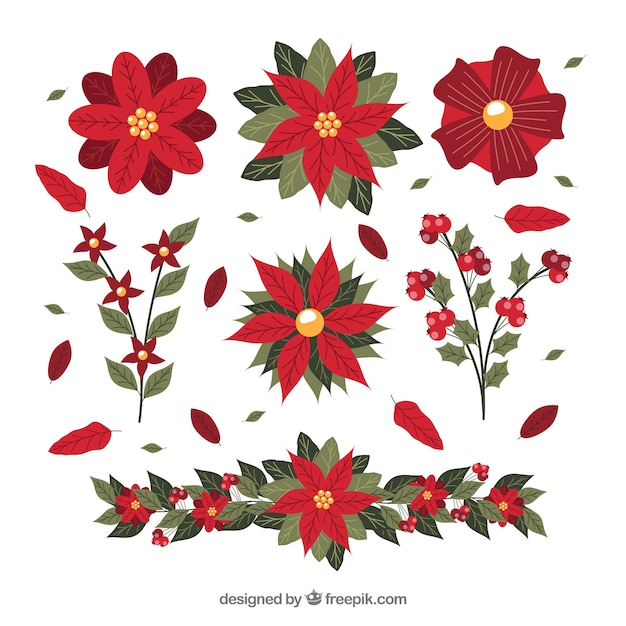 Pack of hand drawn poinsettias Free Vector