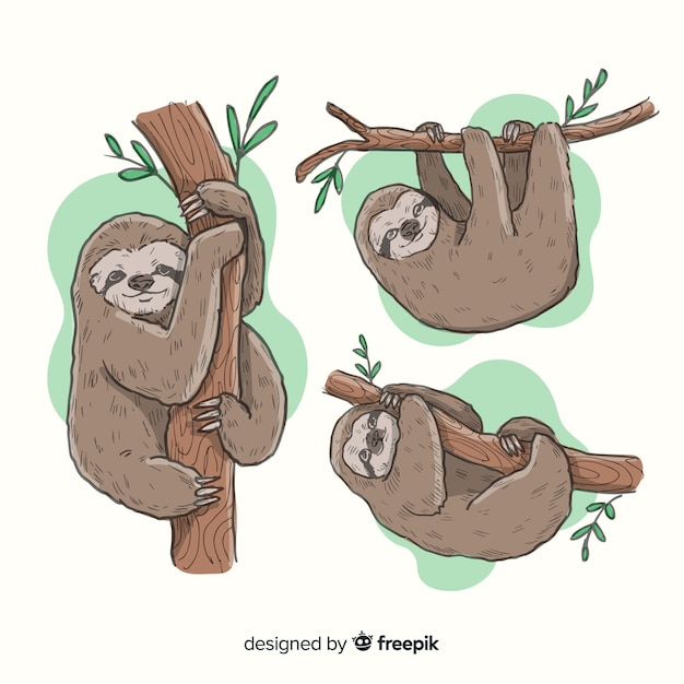 Pack of hand drawn slothful Premium Vector