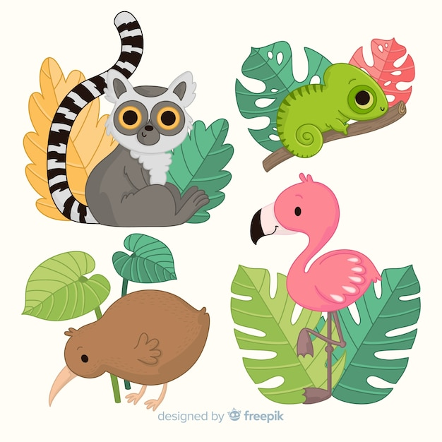 Confezione di animali selvatici disegnati a mano Vettore gratuito