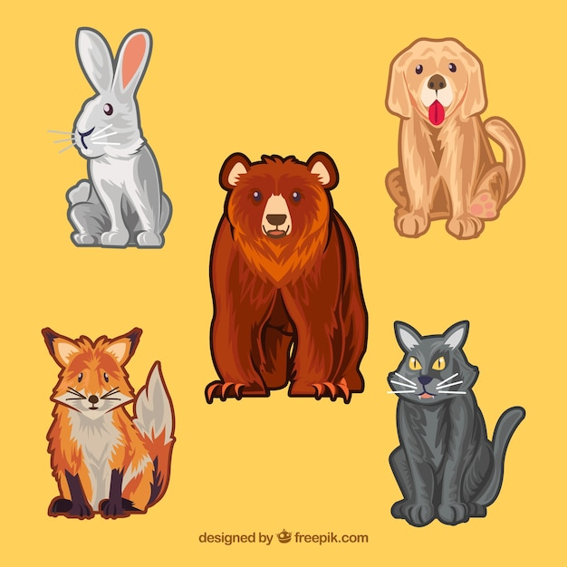 Pack of animal designs