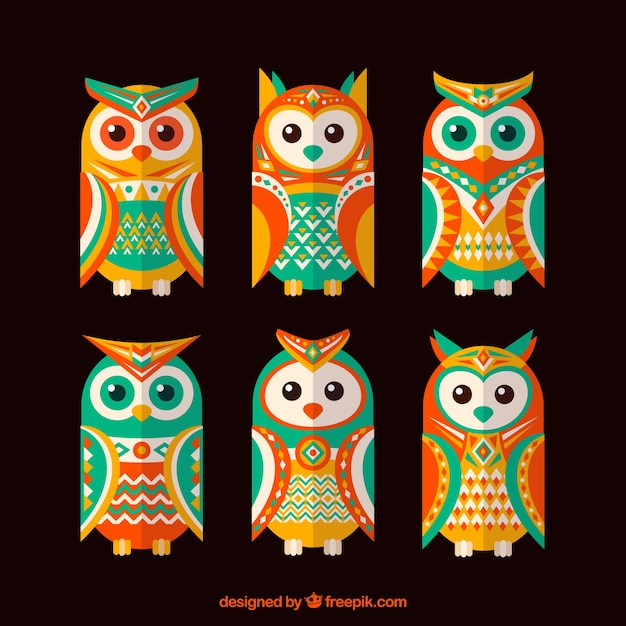 Pack of colorful ethnic owls in flat design Free Vector