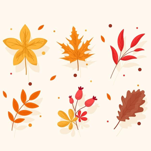 Пакет разных осенних листьев Бесплатные векторы