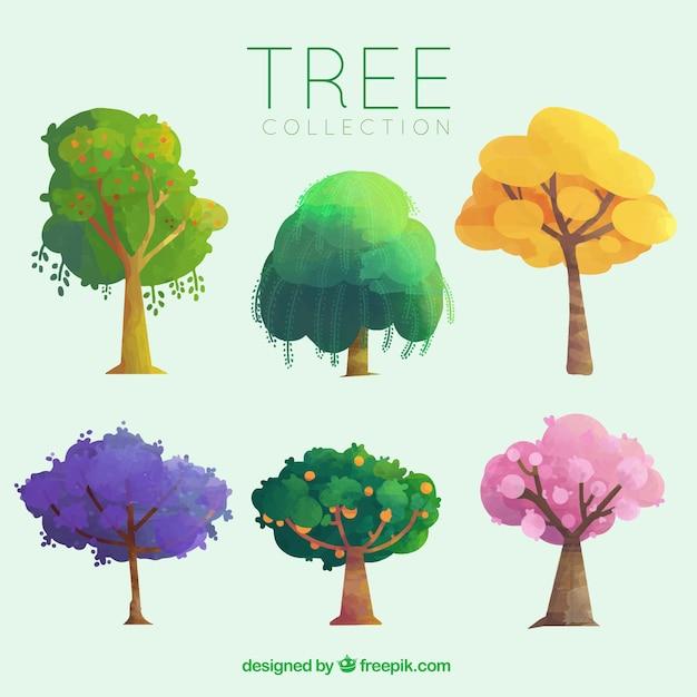Упаковка из различных деревьев с фруктами Бесплатные векторы