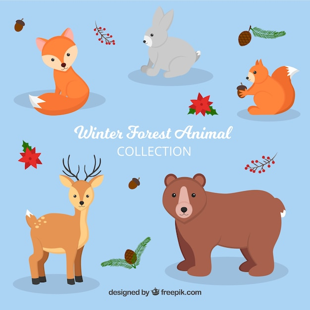 Pack of five cute winter animals