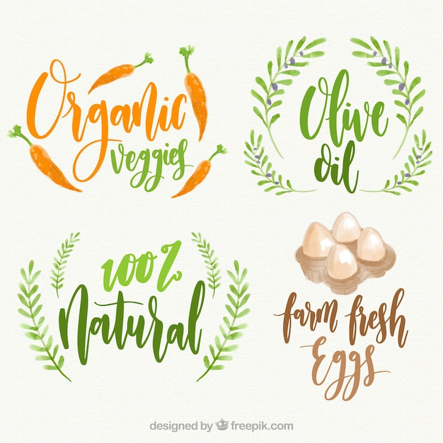 Pack of four organic food labels in watercolor\ style