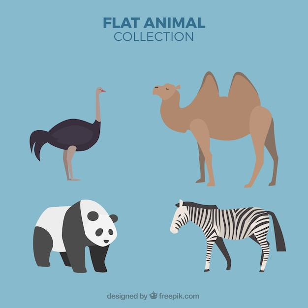 Pack of four wild animals in flat design