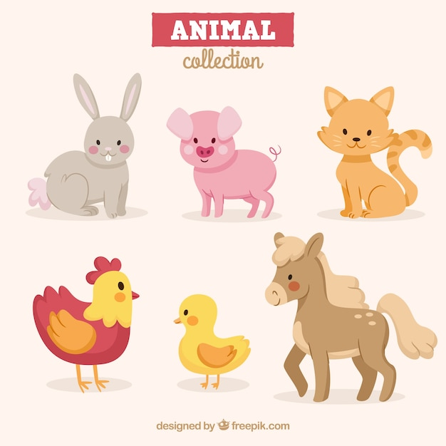 Pack of fun animals with flat design