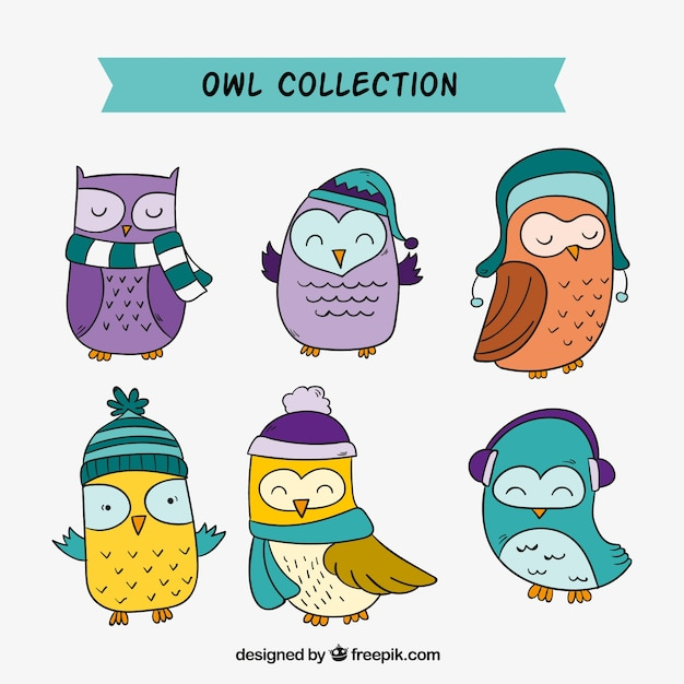 Pack of hand drawn colored owls