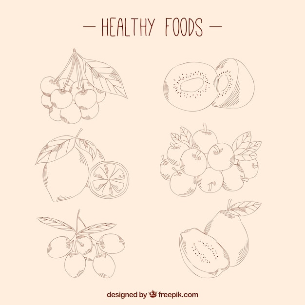 Pack Of Healthy Food Sketches Vector | Free Download