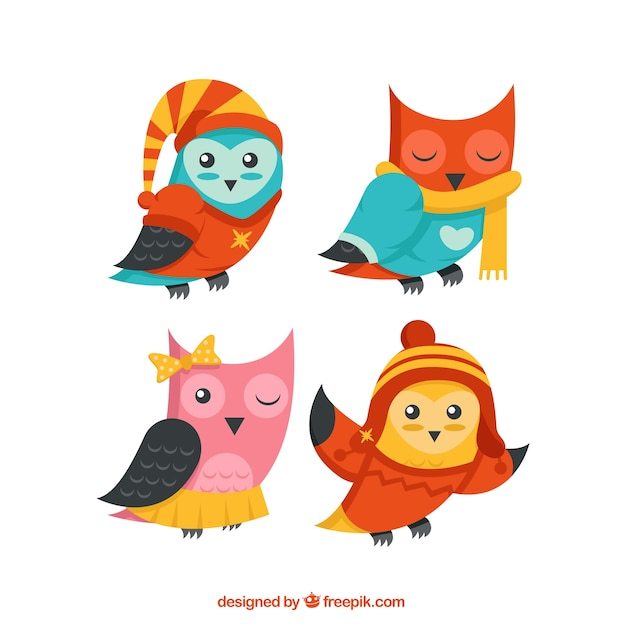 Pack of lovely colorful owls Free Vector