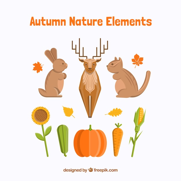 Pack of nature and animals in the autumn\ season